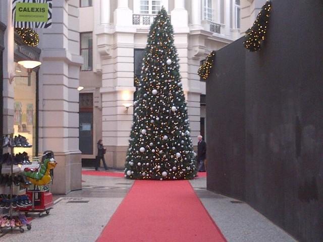 Great Christmas Tree Debate